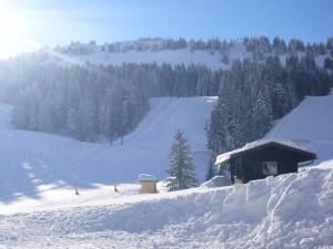 Abteilung Ski